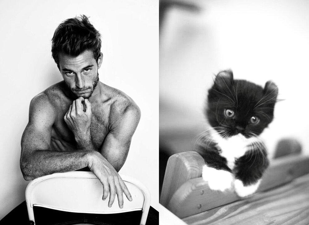 foto-uomini-sexy-gatti-pose-simili-des-hommes-des-chatons-16