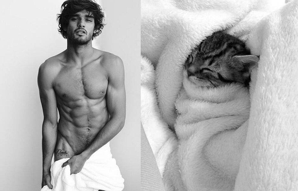 foto-uomini-sexy-gatti-pose-simili-des-hommes-des-chatons-24