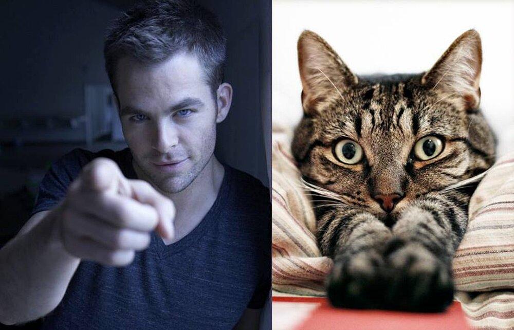 foto-uomini-sexy-gatti-pose-simili-des-hommes-des-chatons-25