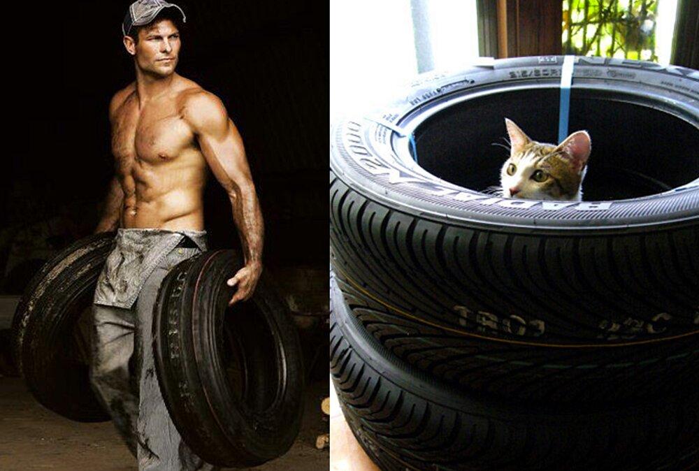 foto-uomini-sexy-gatti-pose-simili-des-hommes-des-chatons-27