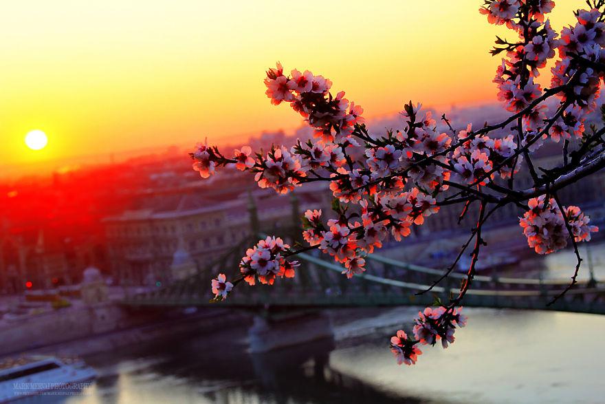 fotografia-alba-tramonto-budapest-mark-mervai-05