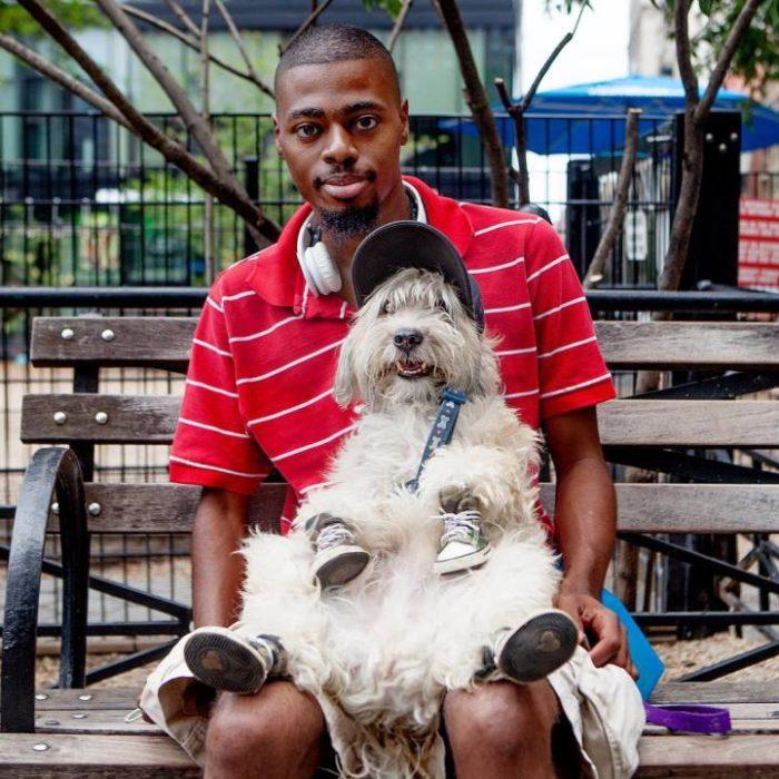 fotografia-amicizia-cani-persone-human-hound-06