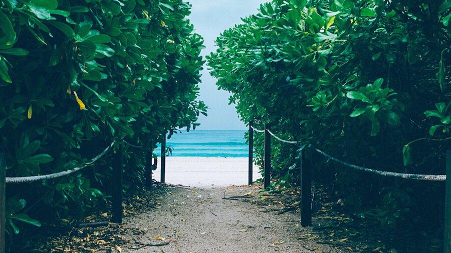 fotografia-arrivando-spiaggia-almost-there-alex-becker-07