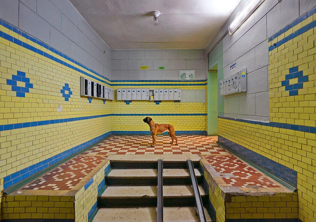 fotografia-russia-scene-surreali-frank-herfort-06