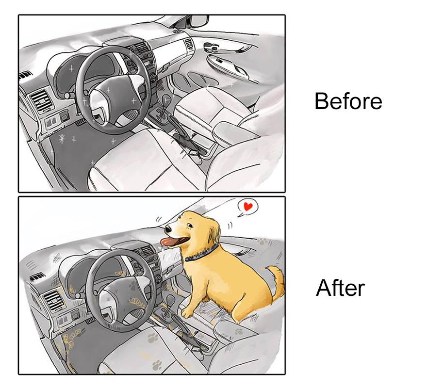 la-vita-prima-e-dopo-cane-maimai-john-2