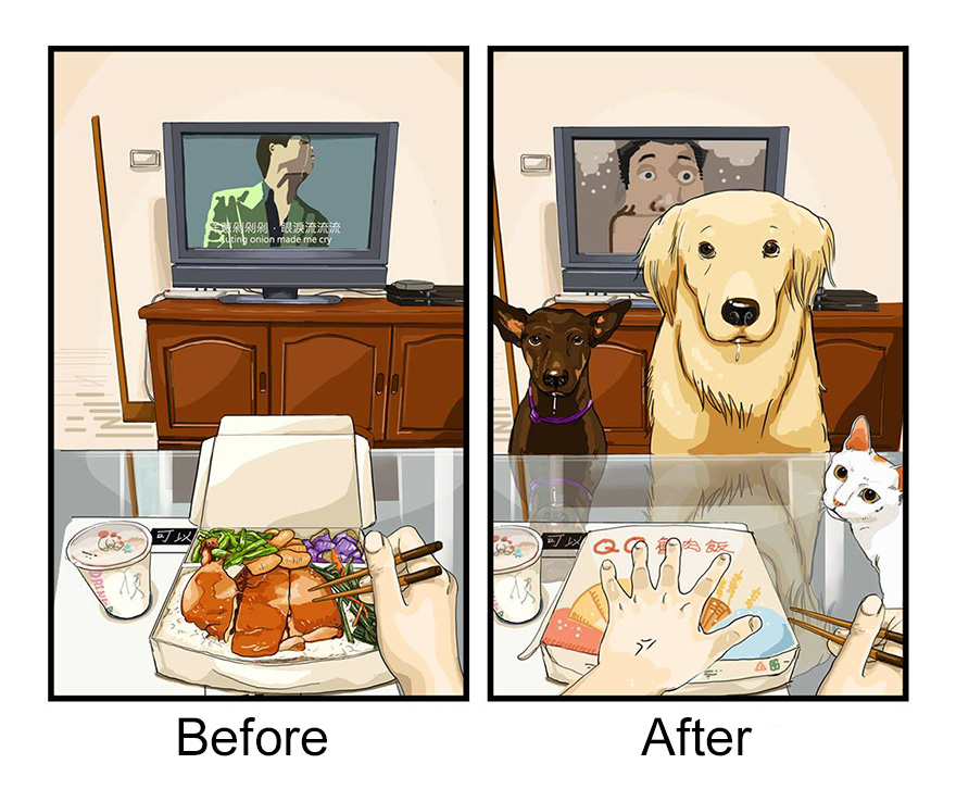 la-vita-prima-e-dopo-cane-maimai-john-4