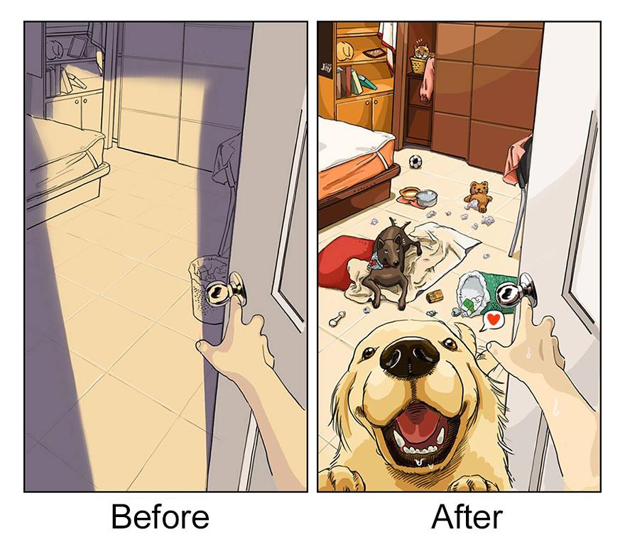 la-vita-prima-e-dopo-cane-maimai-john-9