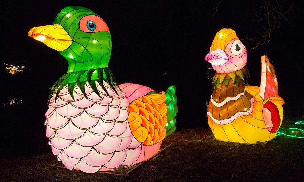 magical-lantern-festival-londra-capodanno-cinese-05