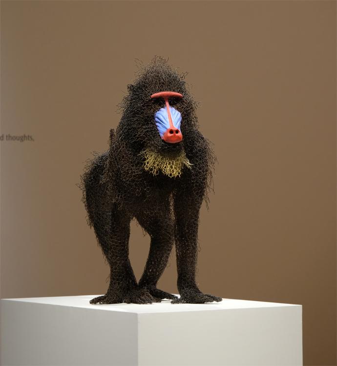 sculture-animali-filo-metallo-kendra-haste-12