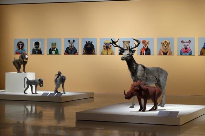 sculture-animali-filo-metallo-kendra-haste-15