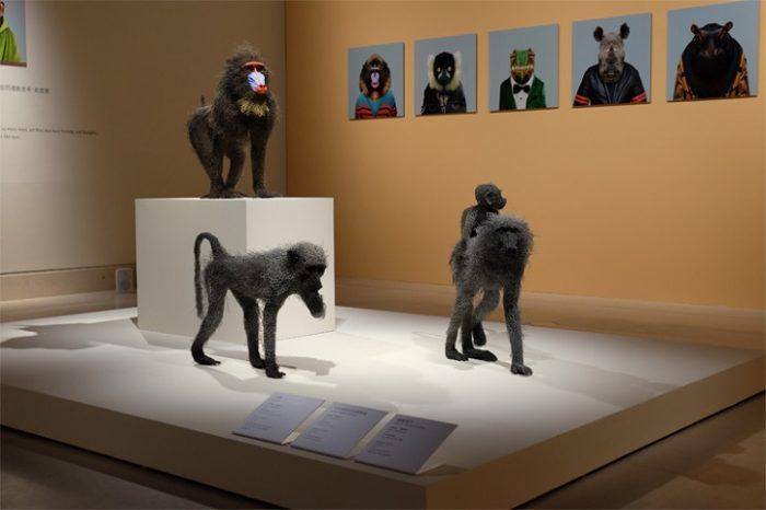 sculture-animali-filo-metallo-kendra-haste-16