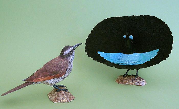 sculture-uccelli-carta-realistici-johan-scherft-09
