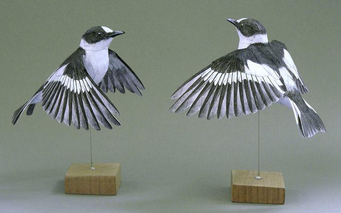 sculture-uccelli-carta-realistici-johan-scherft-10