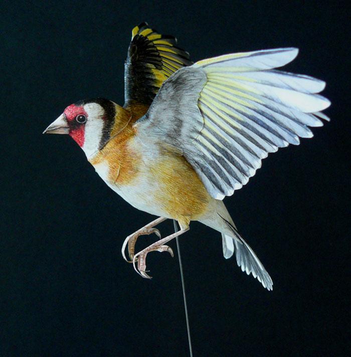 sculture-uccelli-carta-realistici-johan-scherft-12