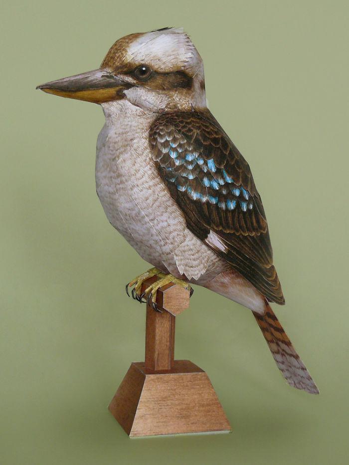 sculture-uccelli-carta-realistici-johan-scherft-13