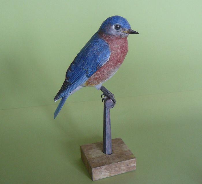 sculture-uccelli-carta-realistici-johan-scherft-14