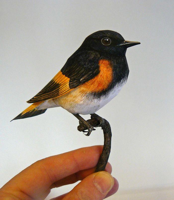 sculture-uccelli-carta-realistici-johan-scherft-21