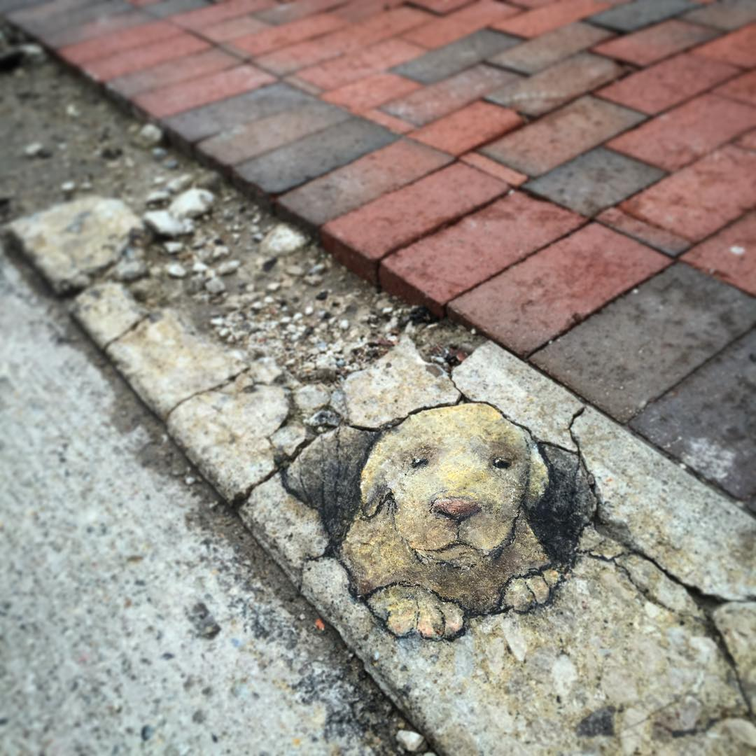 street-art-gesso-david-zinn-8