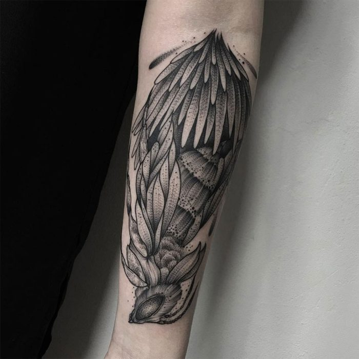 tatuaggi-artistici-animali-mistero-parvick-faramarz-12