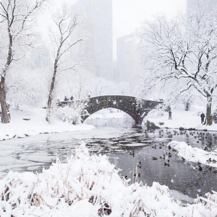 tempesta-bufera-neve-jonas-new-york-instagram-13