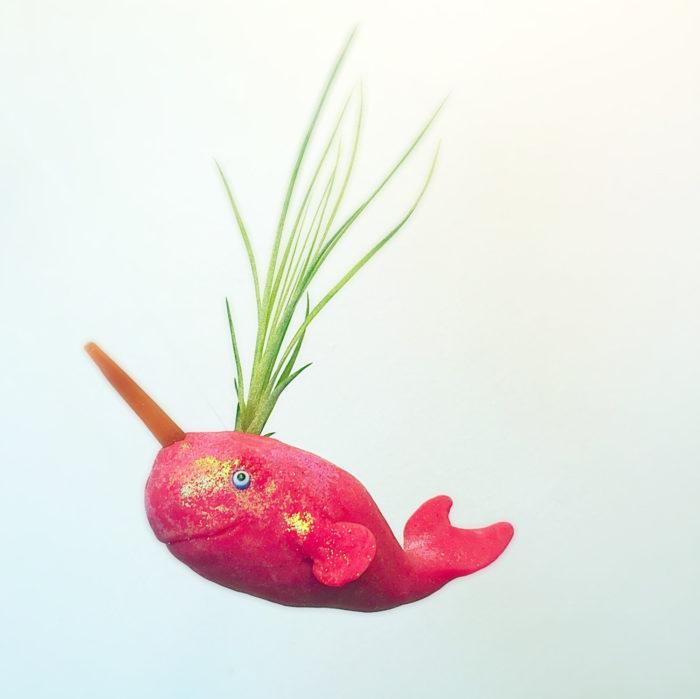 vasi-fioriere-piante-aria-tillandsia-jellyfishkisses-10