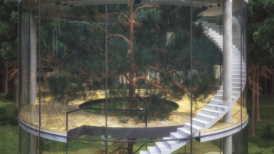 albero-in-casa-di-vetro-aibek-almassov-architettura-1