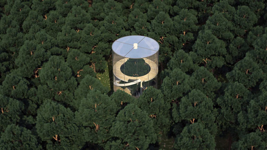 albero-in-casa-di-vetro-aibek-almassov-architettura-6