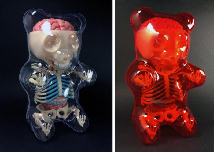 animali-palloncini-trasparenti-anatomia-ossa-organi-jason-freeny-03