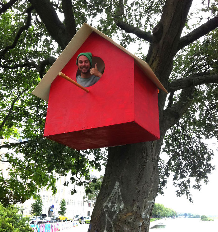 artista-costruisce-casette-uccelli-mondo-danimarca-dambo-10