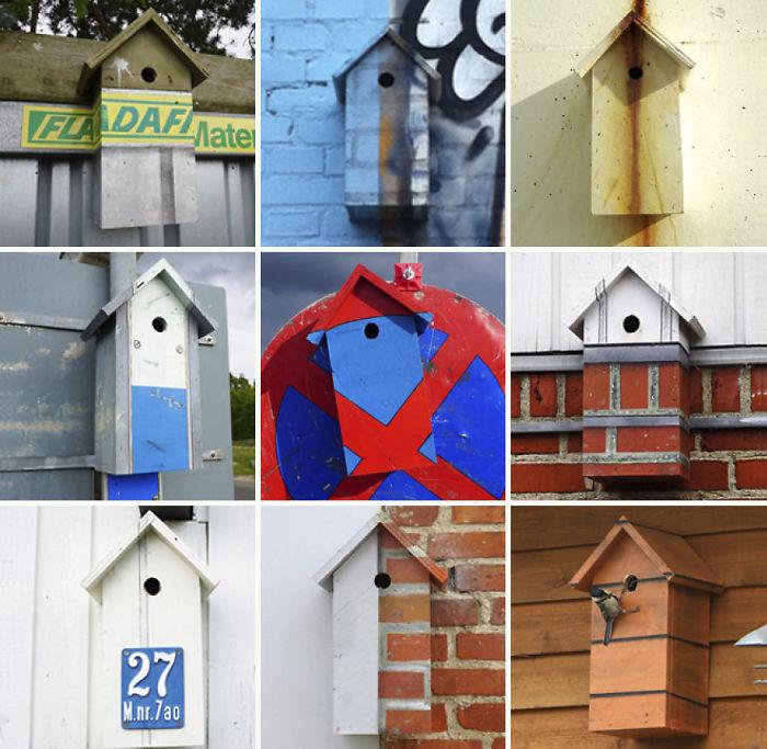 artista-costruisce-casette-uccelli-mondo-danimarca-dambo-15