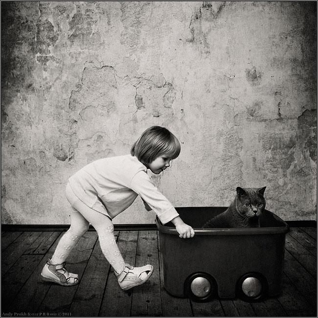 bambina-gatto-fotografia-andrey-prokhorov-andy-prokh-13