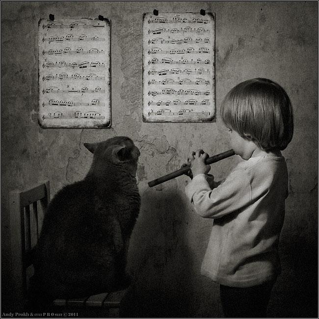 bambina-gatto-fotografia-andrey-prokhorov-andy-prokh-16