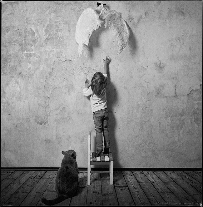 bambina-gatto-fotografia-andrey-prokhorov-andy-prokh-20