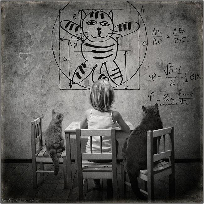 bambina-gatto-fotografia-andrey-prokhorov-andy-prokh-44