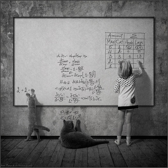 bambina-gatto-fotografia-andrey-prokhorov-andy-prokh-46