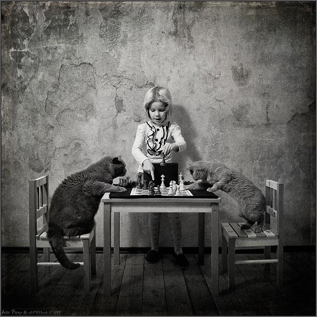 bambina-gatto-fotografia-andrey-prokhorov-andy-prokh-48