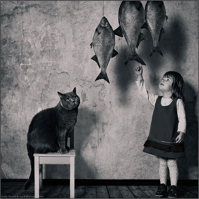 bambina-gatto-fotografia-andrey-prokhorov-andy-prokh-53