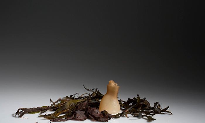 bottiglia-biodegradabile-alghe-plastica-ari-jonsson-1