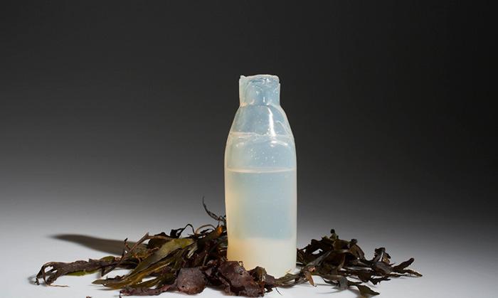 bottiglia-biodegradabile-alghe-plastica-ari-jonsson-2
