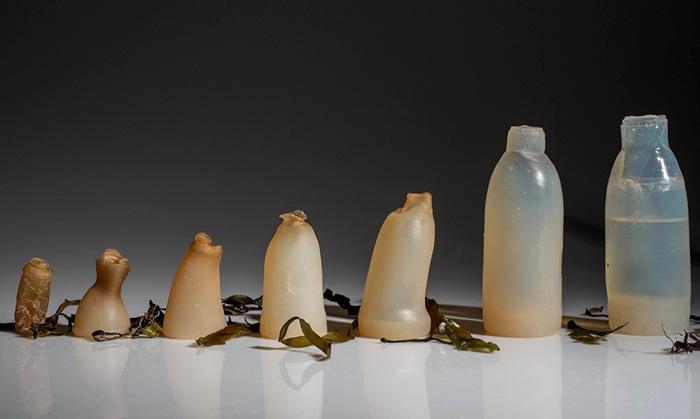 bottiglia-biodegradabile-alghe-plastica-ari-jonsson-5