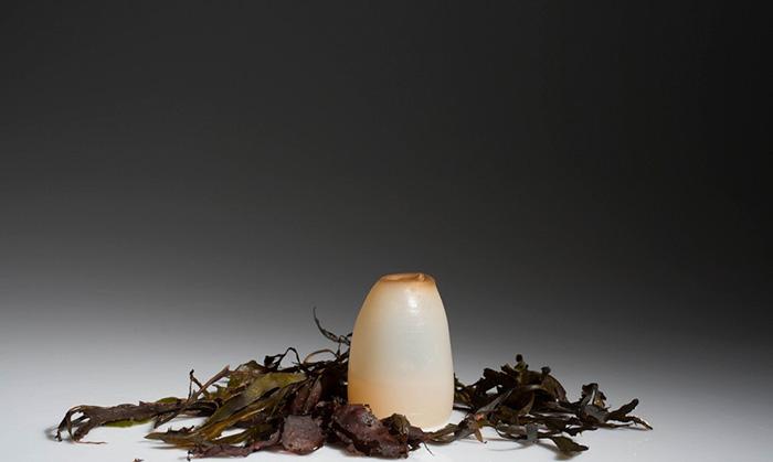 bottiglia-biodegradabile-alghe-plastica-ari-jonsson-6