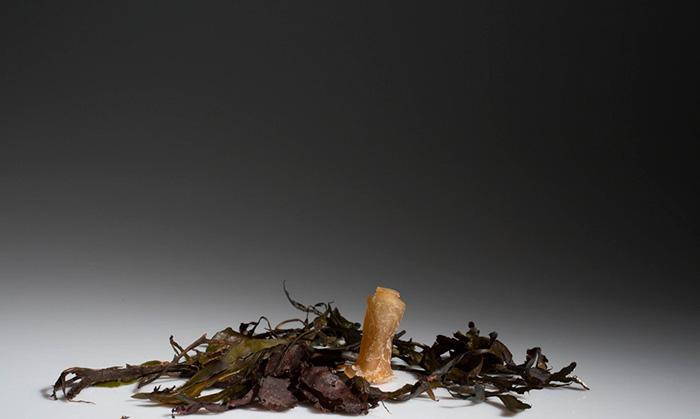 bottiglia-biodegradabile-alghe-plastica-ari-jonsson-8