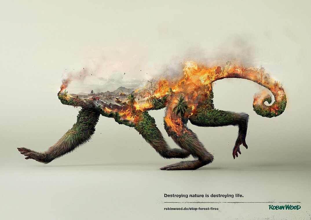 campagna-pubblicitaria-natura-ambiente-deforestazione-petrolio-robin-wood-1