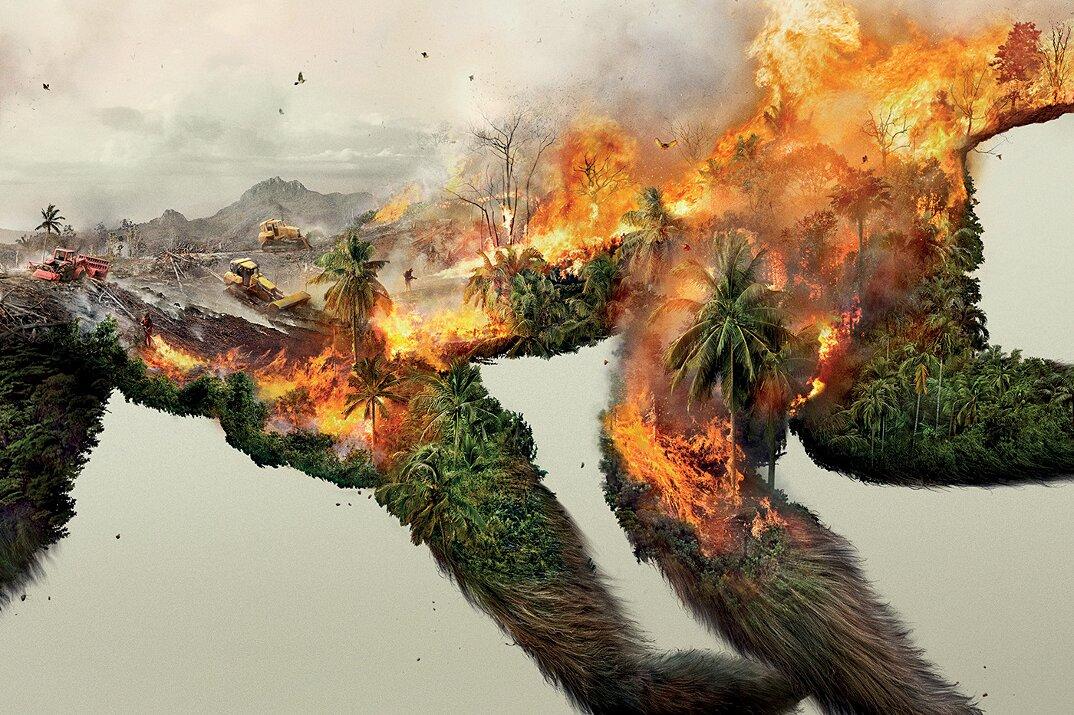 campagna-pubblicitaria-natura-ambiente-deforestazione-petrolio-robin-wood-2