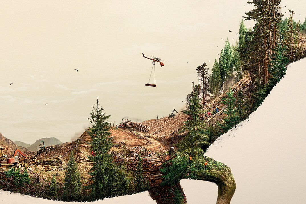 campagna-pubblicitaria-natura-ambiente-deforestazione-petrolio-robin-wood-5