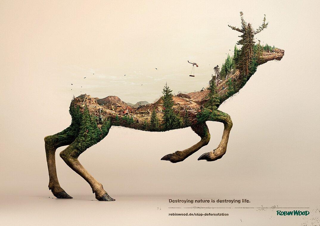 campagna-pubblicitaria-natura-ambiente-deforestazione-petrolio-robin-wood-6