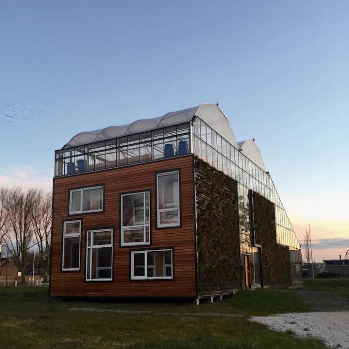 casa-eco-sostenibile-serra-gigante-rotterdam-10
