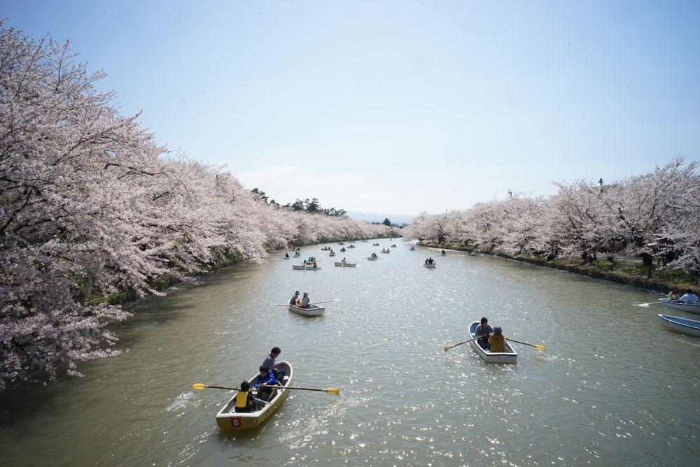 ciliegi-in-fiore-giappone-primavera-national-geographic-02
