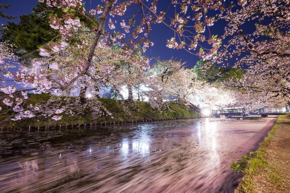 ciliegi-in-fiore-giappone-primavera-national-geographic-15