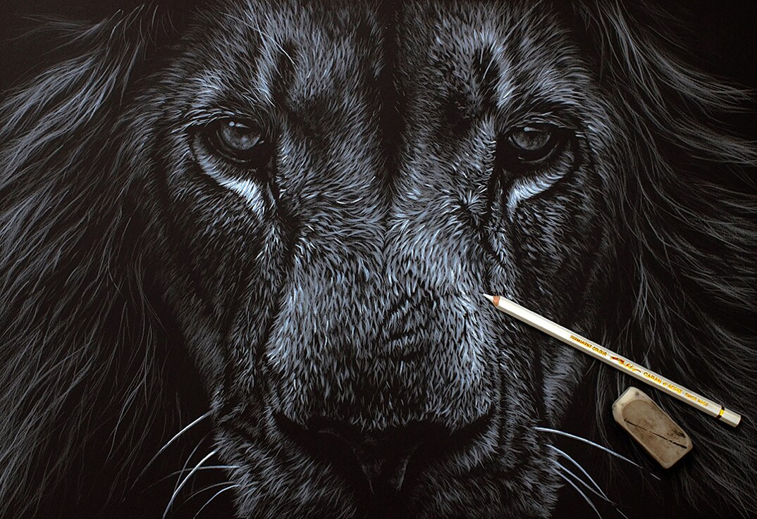 disegni-dipinti-iperrealisti-animali-selvatici-africa-richards-symonds-01